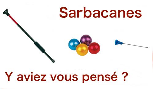 Sarbaces logo 1