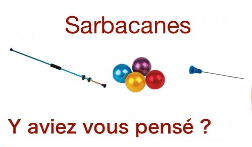 Sarbaces logo 3